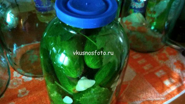 Огурцы под капроновую крышку холодным способом рецепт
