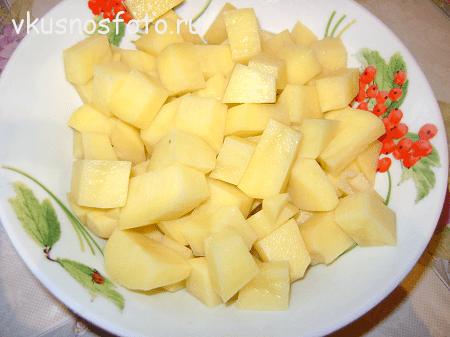 sup-s-perepelami